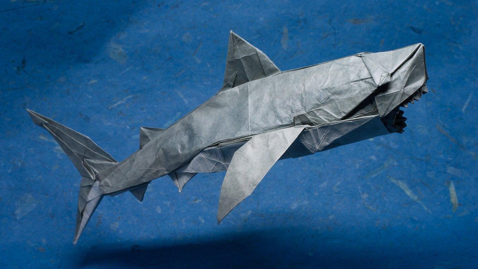 Origami Sharks for Shark Awareness Day